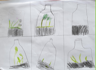 Year 3 Home Learning Science March 2020