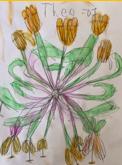 Y1 Week 4 Georgia O'Keeffe Art April 2020
