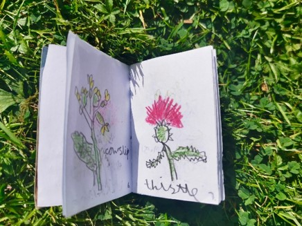 Y1 Wild Flower Books May 2020