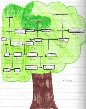 Y6 Science Family Tree May 2020
