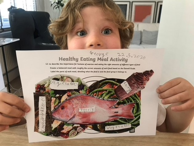 Y2 Art Project & Healthy Eating May 2020